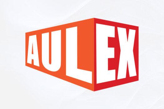 Aulex Africa | Typographic Logo Design